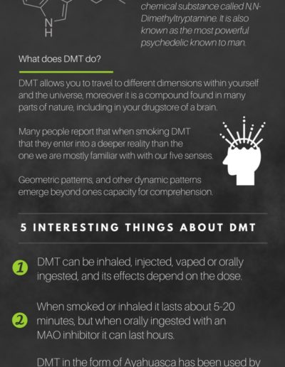 dmt-what-is-it