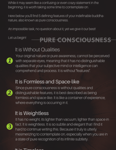 buddha-nature-feature-consciousness-infographic