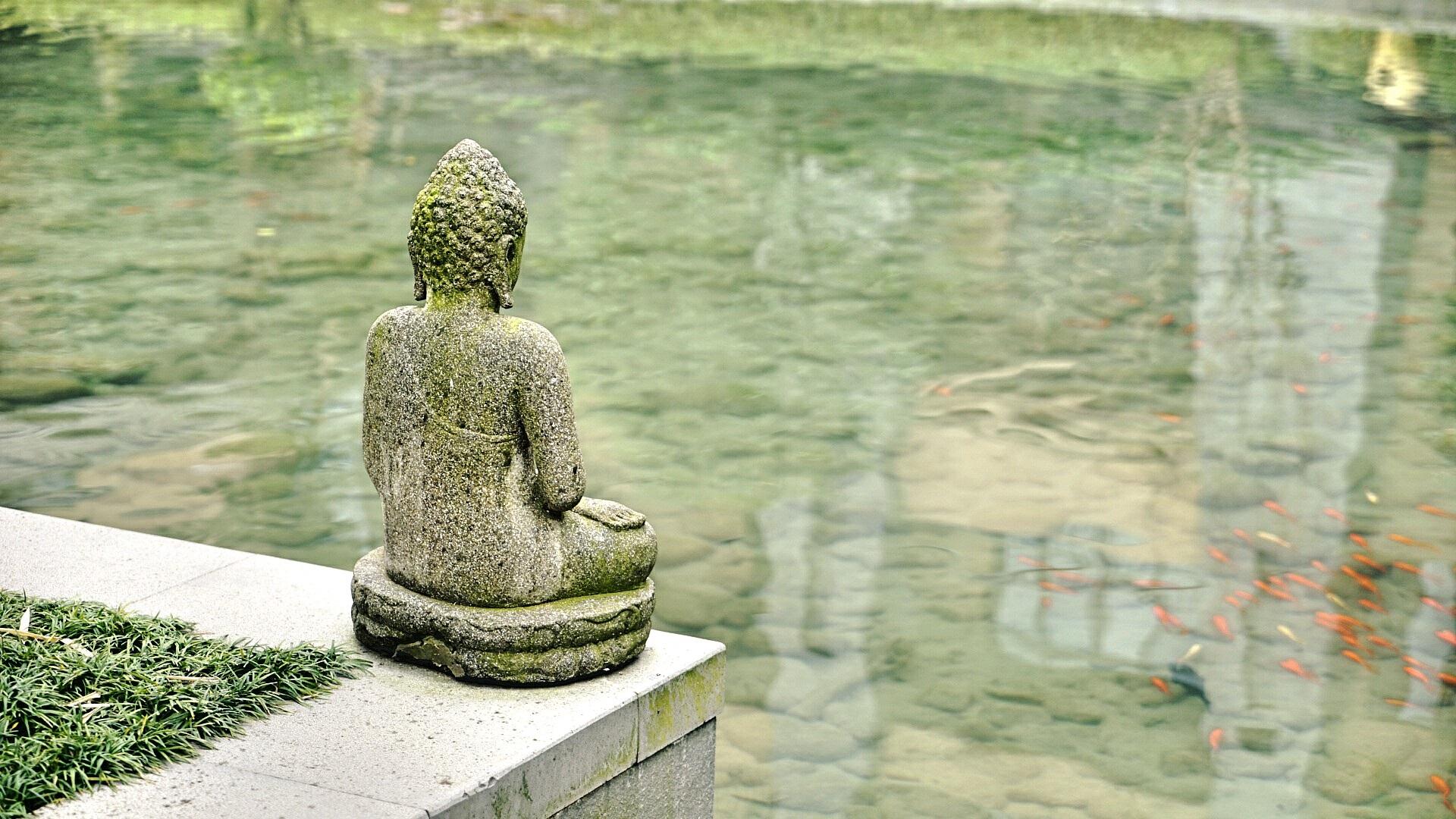 Buddha sitting by the pond (mystic)