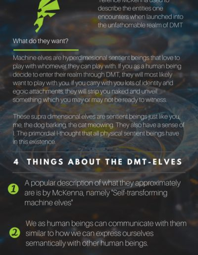 what-are-machine-elves-dmt