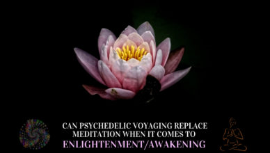 Can psychedelic voyaging replace meditation when it comes to enlightenment/awakening?