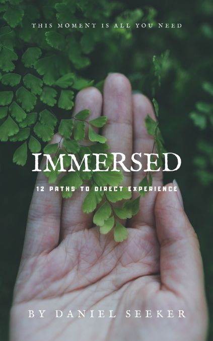 Immersed: 12 Paths to Direct Experience