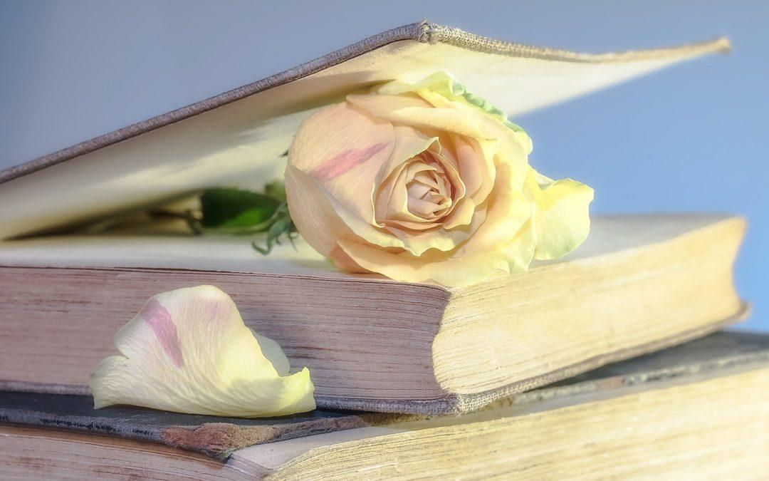 rose in a book
