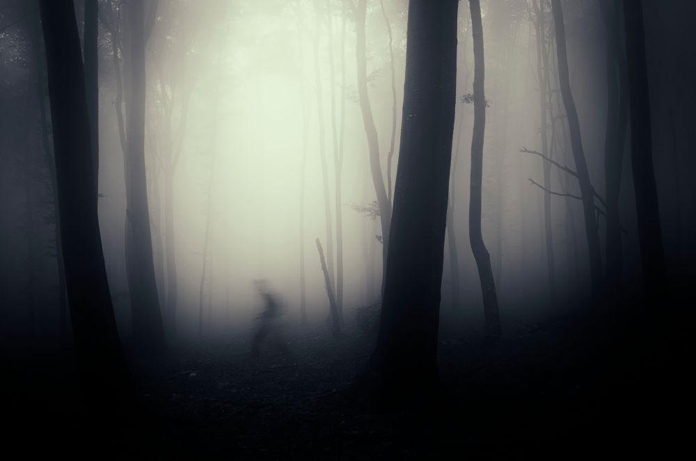 Blurry man in forest misty